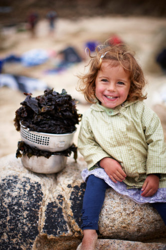 Photograph of Ivy with seaweed on the beach in Cornwall, with Fat Hen.
