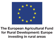 Logo for the European Agricultural Fund for Rural Development: Europe investing in rural areas