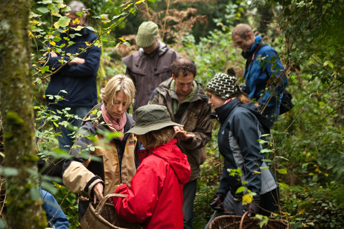 Photograph of a forage, cook and feast day course at Fat Hen, the Wild Cookery School in Cornwall