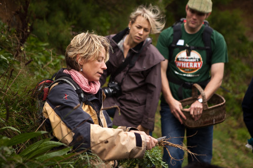 Photograph of a foraging walk course at Fat Hen, the Wild Cookery School in Cornwall