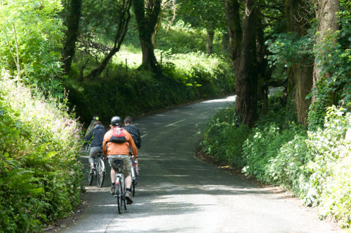 Photograph of a wild food cycling day at Fat Hen, The Wild Cookery School, in West Cornwall